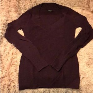 Express fitted ribbed v-neck sweater